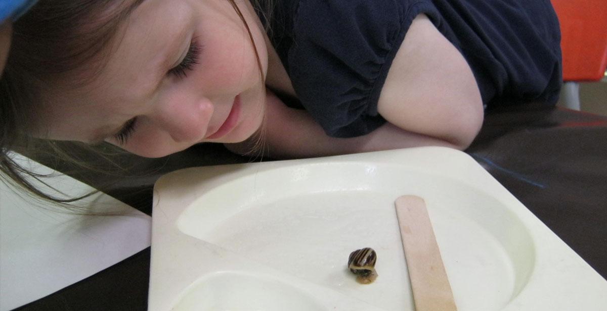 PJ snail (1)